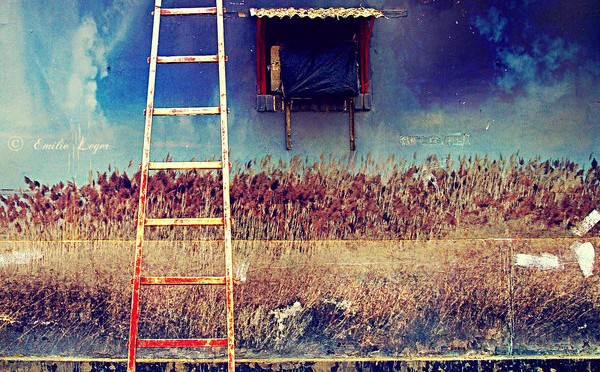 Devenir écrivain: L'échelle des narrations et le rythme